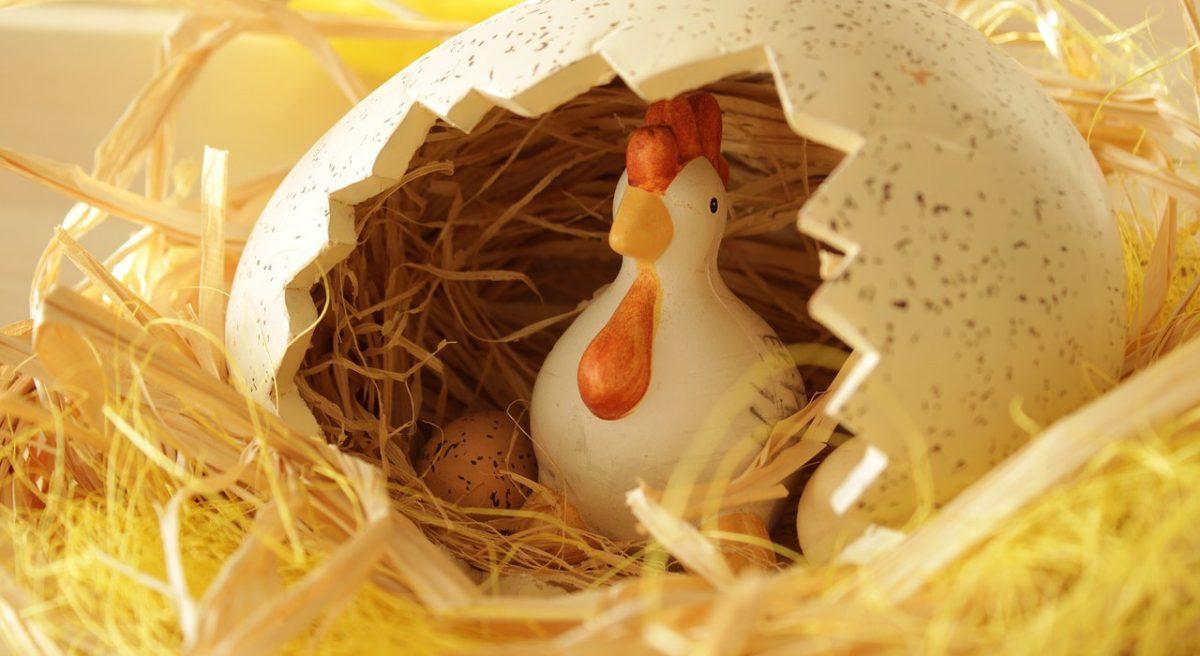 přání k velikonocům, velikonoční přání, slepička a vajíčka